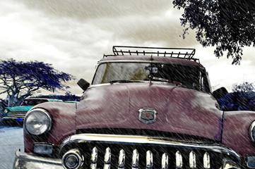 Garden Poster Cars from Cuba Cuba Rain