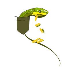 snake a bird