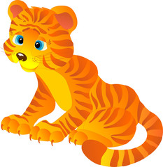 Cute cartoon Tiger, vector illustration