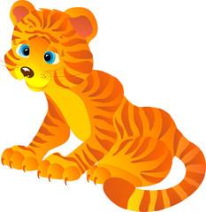 Cute cartoon Tiger, vector illustration