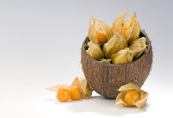 physalis berries in coconut shell composition