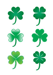 three and four leave green clover vector illustration