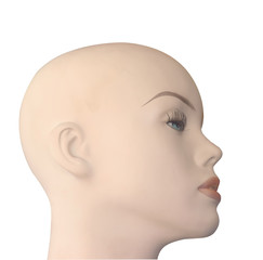 Bald Shop Mannequin Head