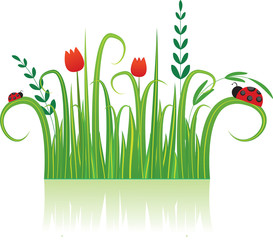 Photo sur Aluminium Coccinelles Background with flowers and Ladybird. Vector illustration