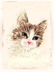 vintage portrait of the cat