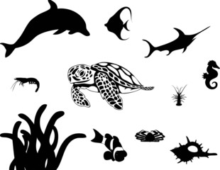 Sea Animal Collage (Vector)