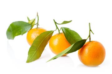 fresh mandarin fruits and green leaves