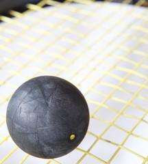 Squash ball on a squash racket strings