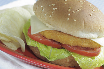chicken hamburger