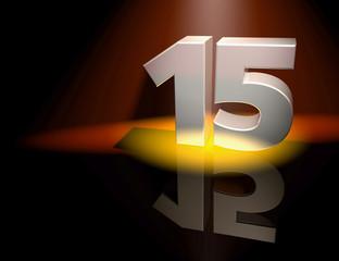 15 fifeteen birthday celebration anniversary