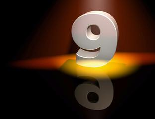 9 nine birthday anniversary celebration