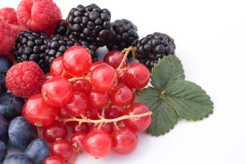 Dieta E Nutrizione - Frutti Rossi