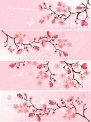 Cherry blossom, banner. Vector illustration
