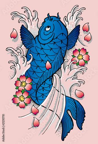 Carpa koi blu immagini e vettoriali royalty free su for Carpa koi negra