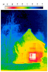 thermal imaging of a detached house and tree