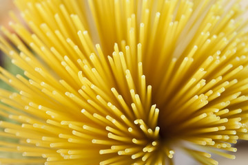 Abstract Shot of Dried Spaghetti Pasta