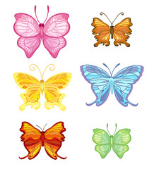 six elegant fragile beautiful colorful butterfly