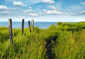 Fototapete - Weg zum Meer