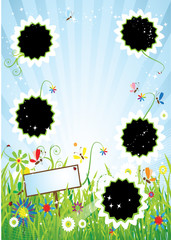 Summer meadow, insert text or photo into frames