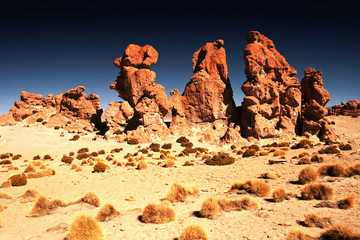 Landscape of Bolivia