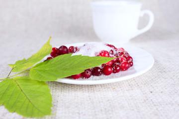 Cowberry in sugar against a mug