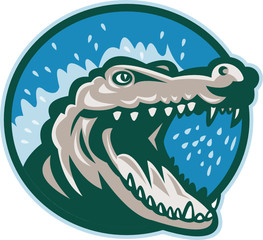 Angry crocodile head snapping