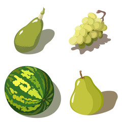 Set of four green fruits on white background