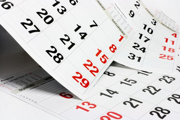 Pages of Calendar