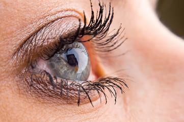 Close-up of a beautiful eye