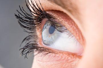 Macro woman eye