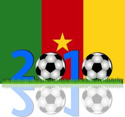 Fussball 2010 Kamerun