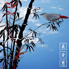 Bambus bamboo 0310