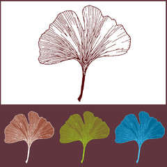 Photos illustrations et vid os de d coration murale for Decoration murale ginkgo
