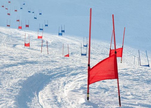 Ski gates with parallel slalom