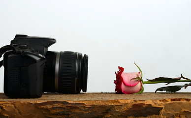 Photo camera and rose lie against each other