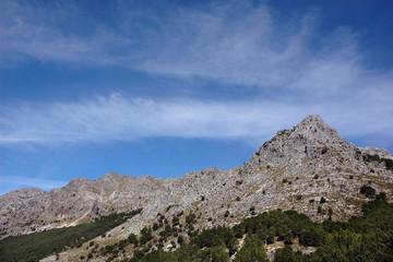 Sierra de Grazalema.Cádiz.Andalucia