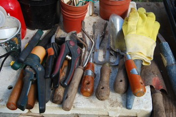 Pile of small gardening tools equipment