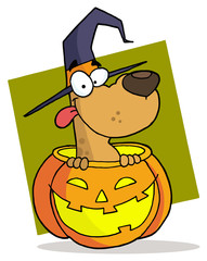 Cartoon character halloween dog