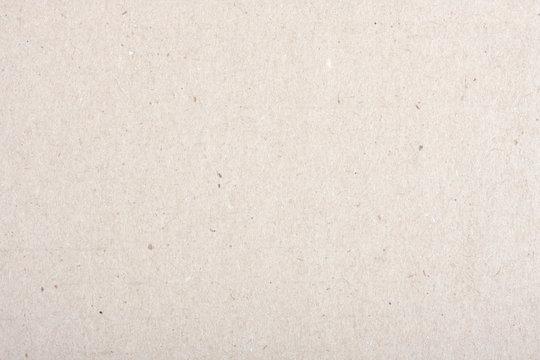 Backgrounds of light cardboard.