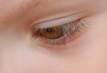 closeup view of eyelashes of a child with soft focus on eye