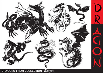 Asian Dragons Silhouette Collection - Tattoo Vector