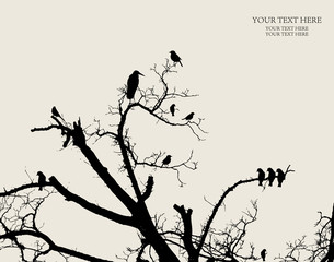 Photo sur Toile Oiseaux sur arbre vector flower background
