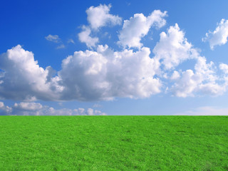 Blue sky and grass in park