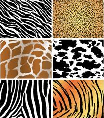 6 animal skin pack
