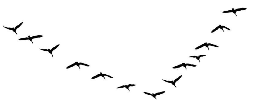 flying geese vector