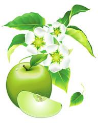 Apple green, flowering