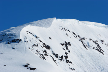 Snowy mountain peaks in Alaska