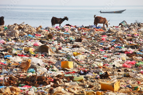 trash a threat to environment Essays - largest database of quality sample essays and research papers on trash a threat to environment.