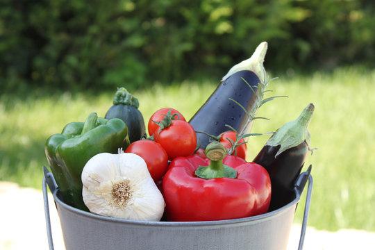 Légumes : la santé !
