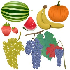 Fruits and berries set